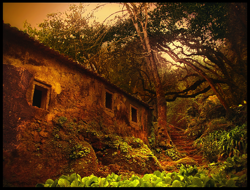 Landscape photography in Convento dos Capuchos, located in Sintra, made by landscape photographer José Ramos from Portugal