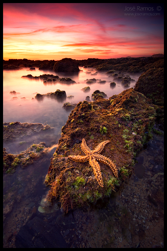 Long exposure waterscape photography in Vila Nova de Milfontes, in the Alentejo region, depicting a starfish, made by landscape photographer José Ramos from Portugal