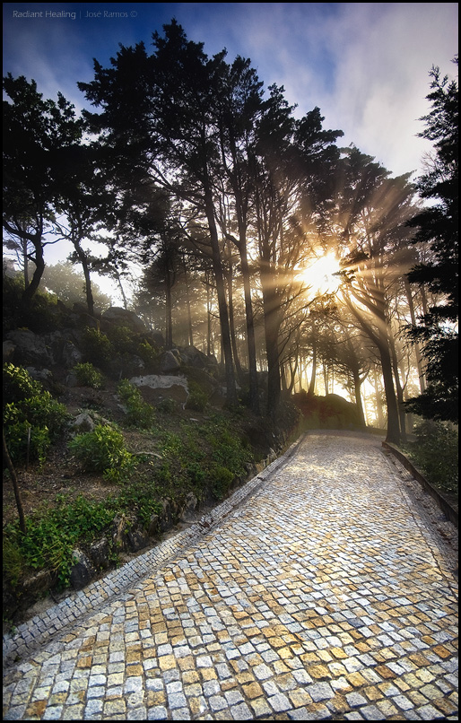 Landscape photography in Parque da Pena, located in Sintra, made by landscape photographer José Ramos from Portugal