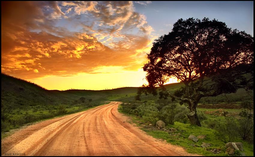Landscape photography in Serra de Monchique, located in Algarve, shot by landscape photographer José Ramos from Portugal