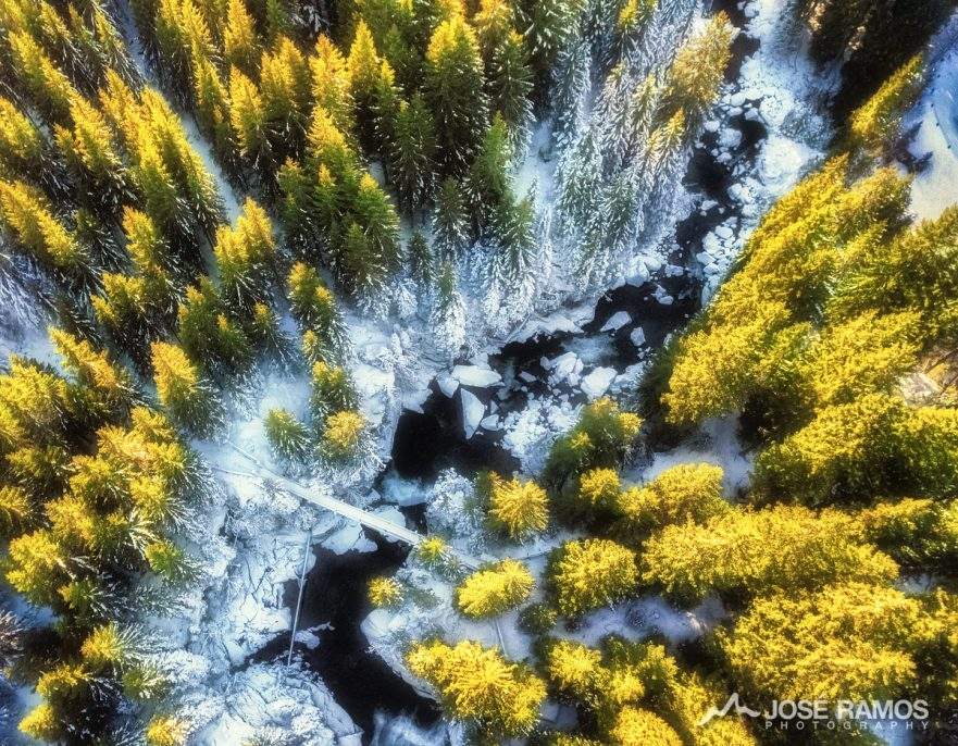 Aerial drone photography showing the Paneveggio Forest in Dolomites, Italy, shot by landscape photographer José Ramos